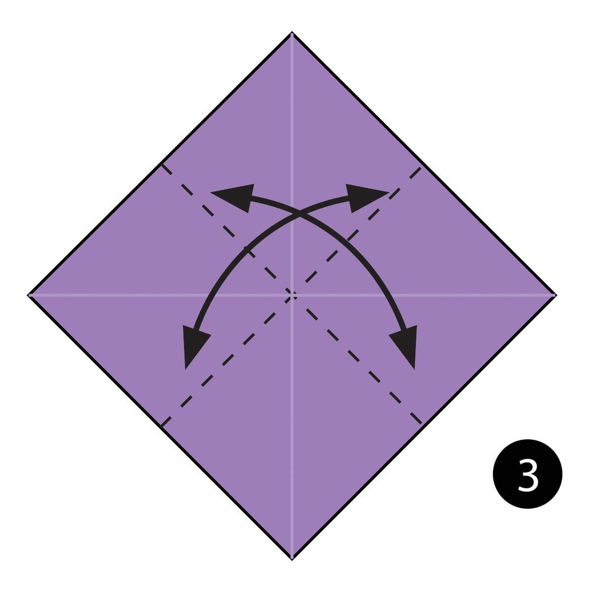 Iris Step 3