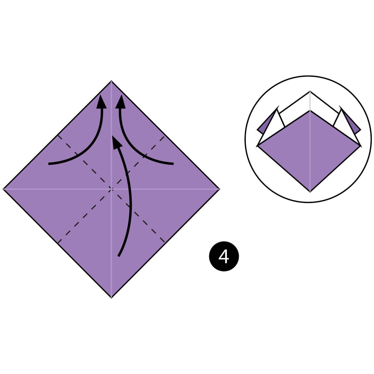 Iris Step 4