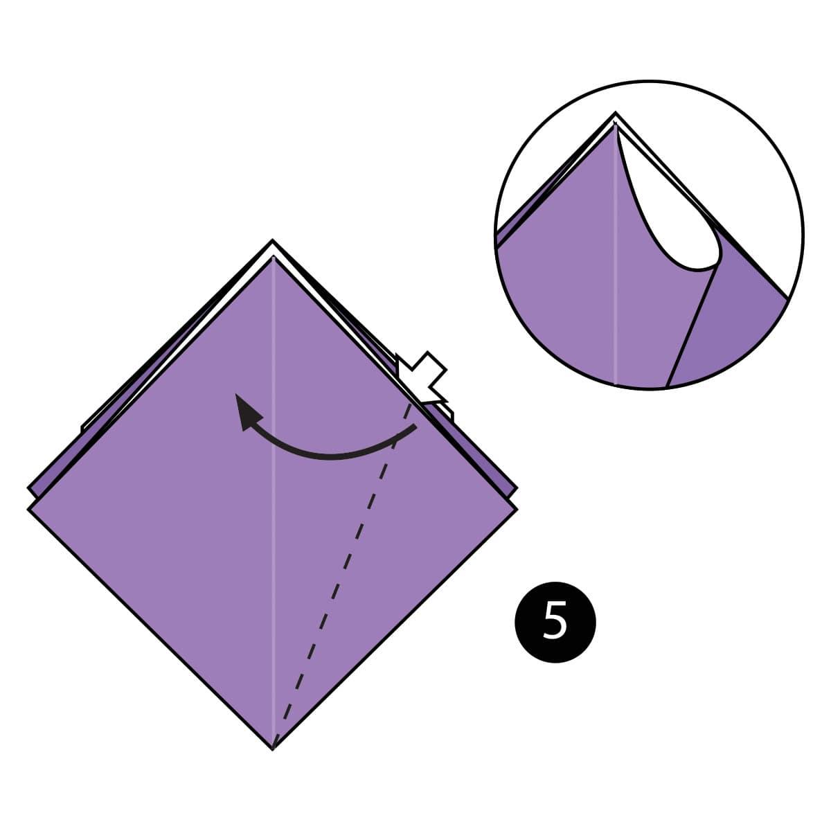 Iris Step 5