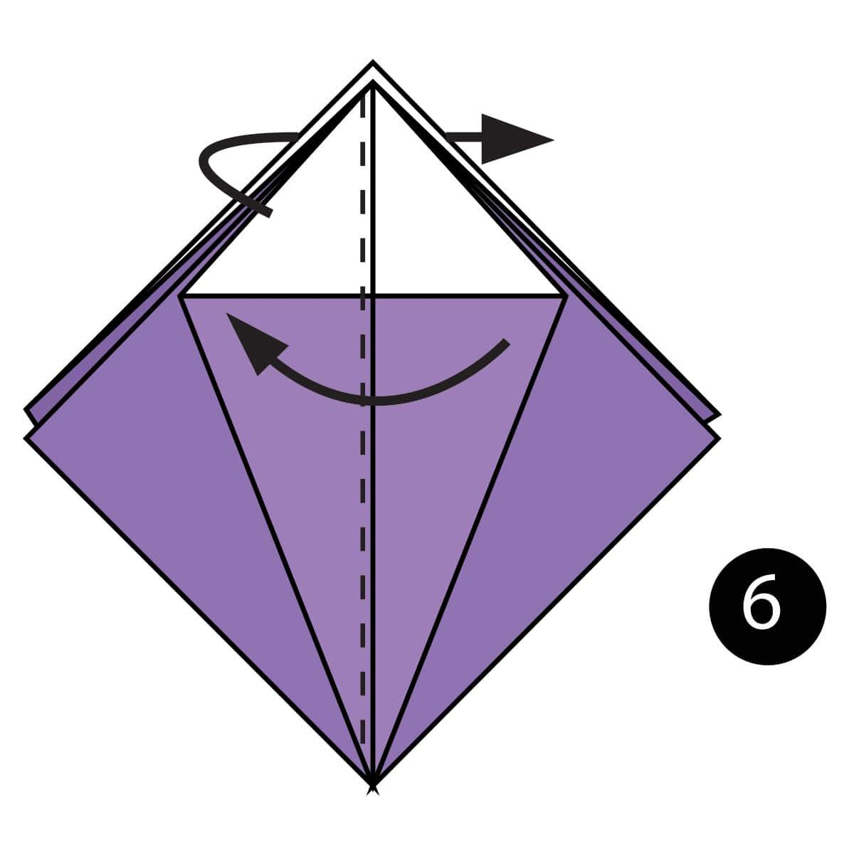 Iris Step 6