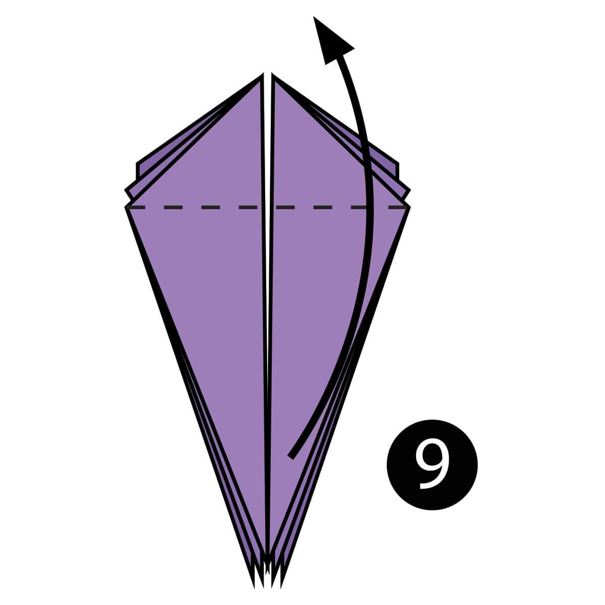 Iris Step 9