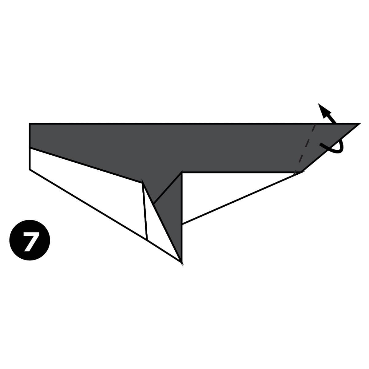 Killer Whale Step 7