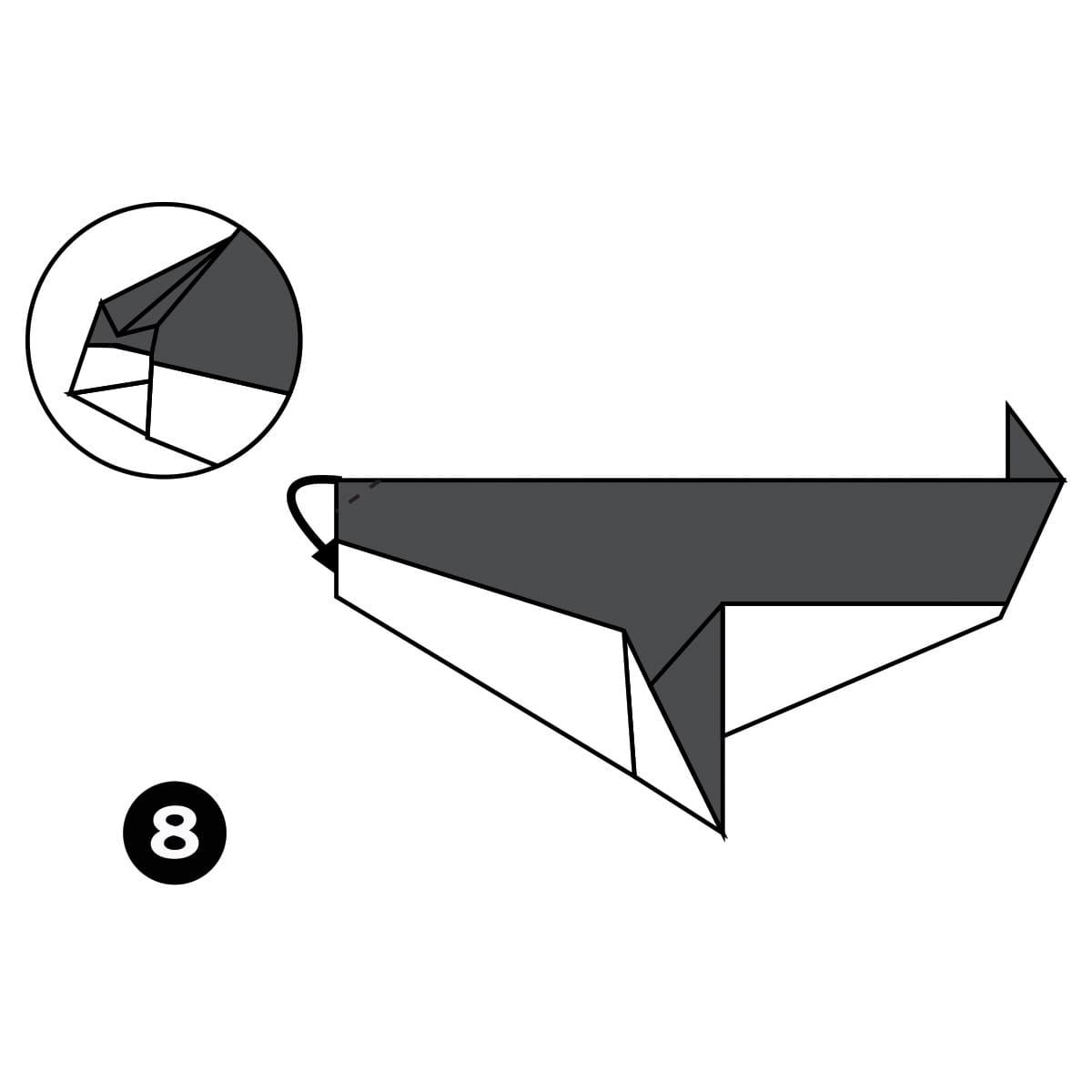 Killer Whale Step 8