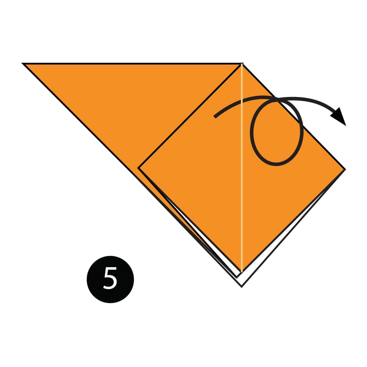 Orange Step 5