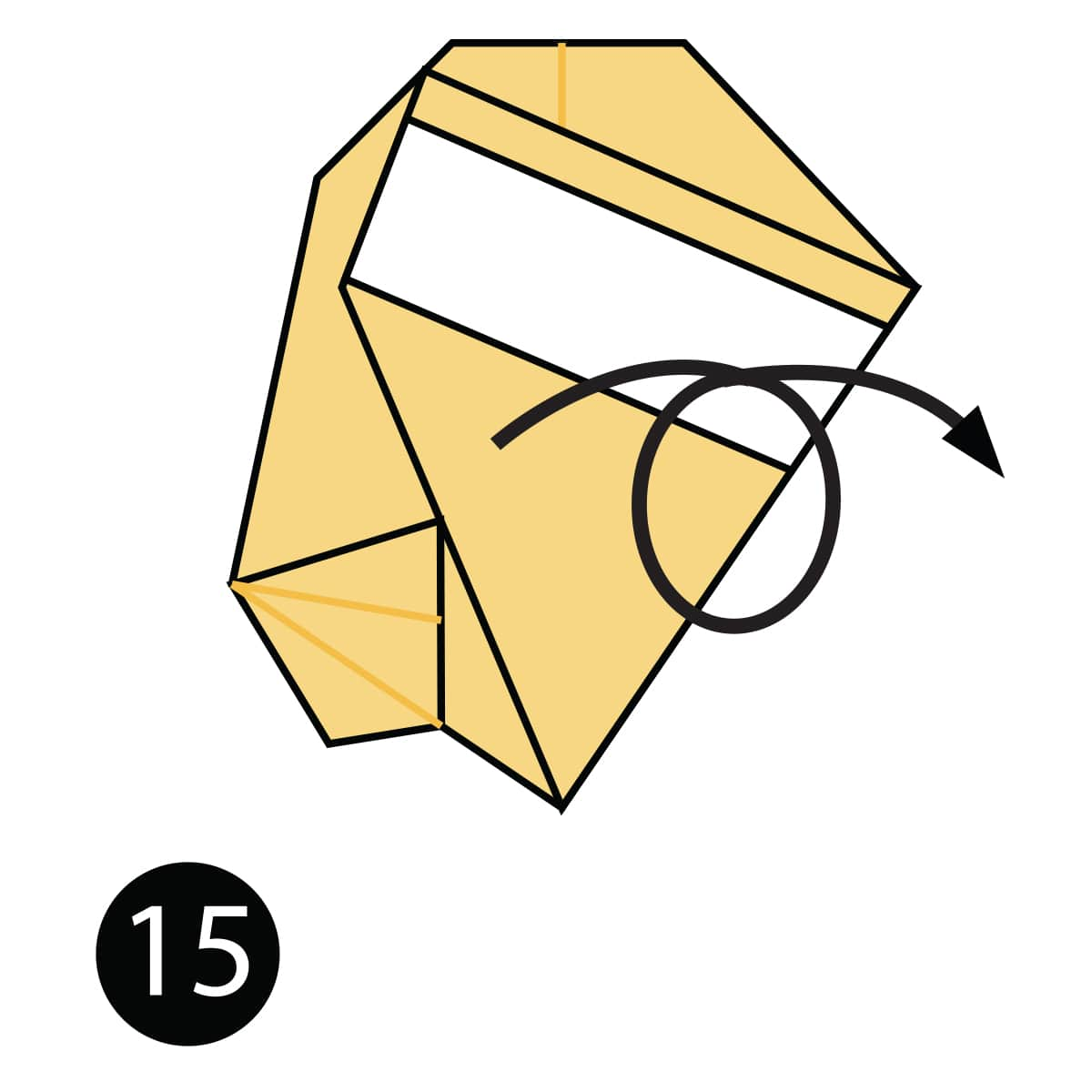 Owl Step 15