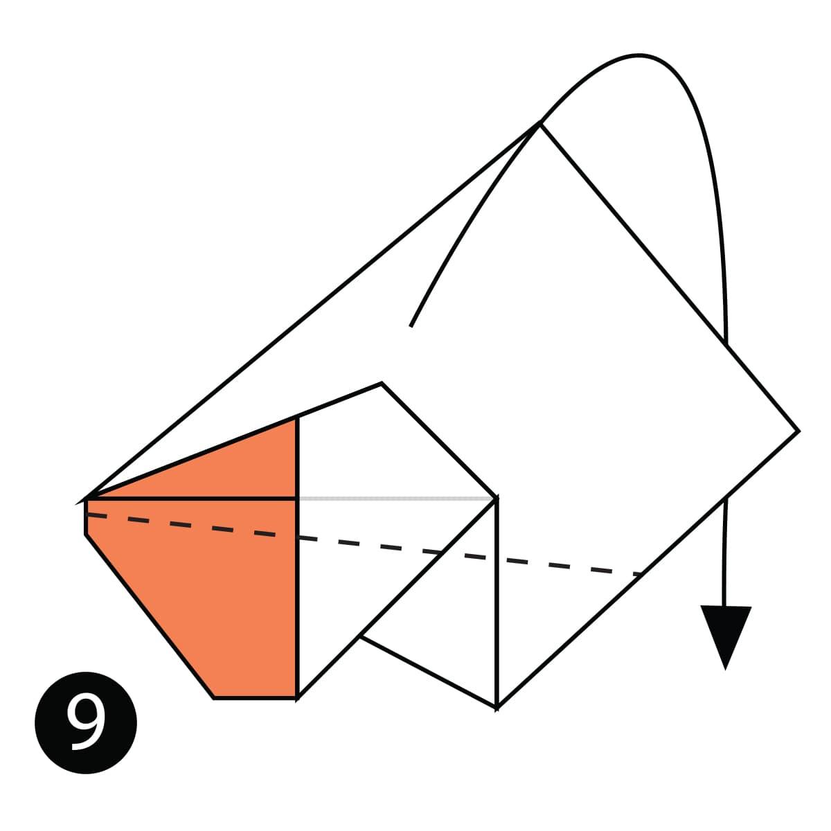 Pelican Step 9