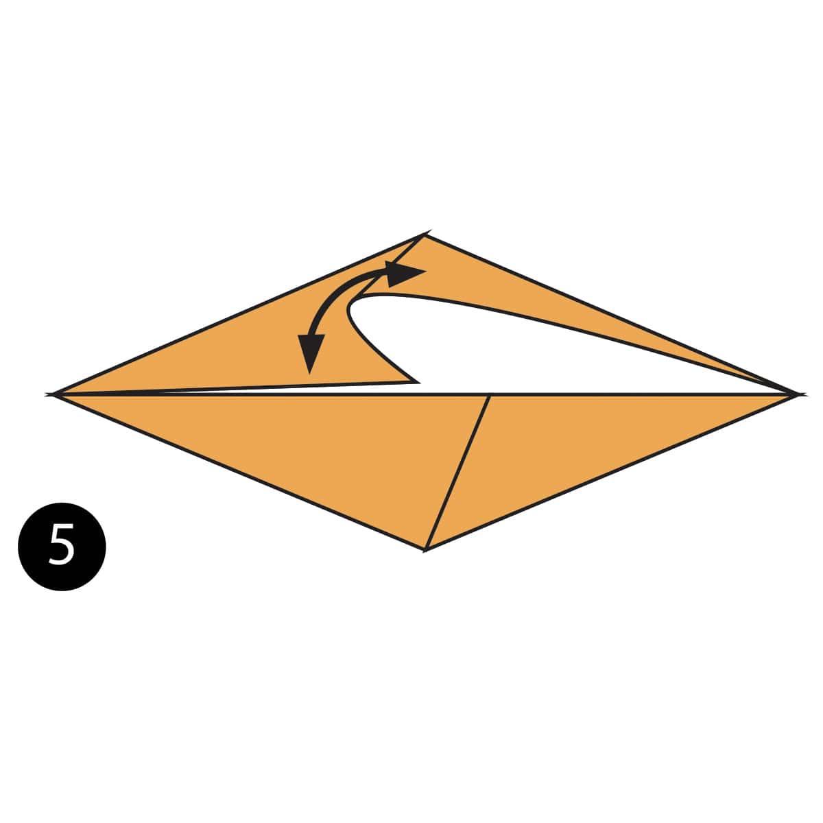 Plesiosaurus Step 5