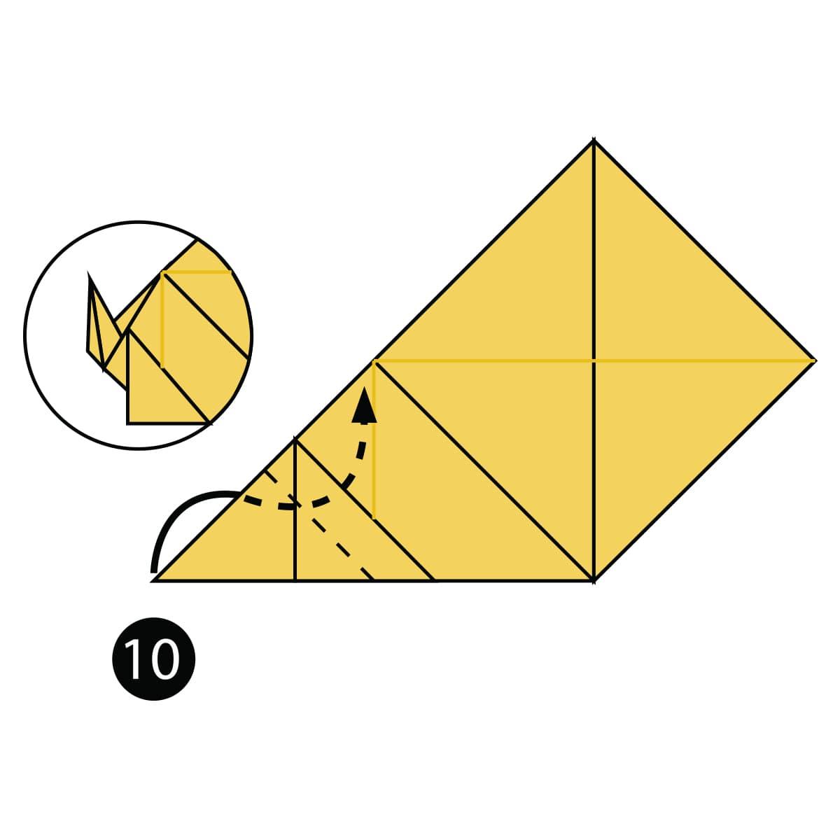 Pomeranian Step 10