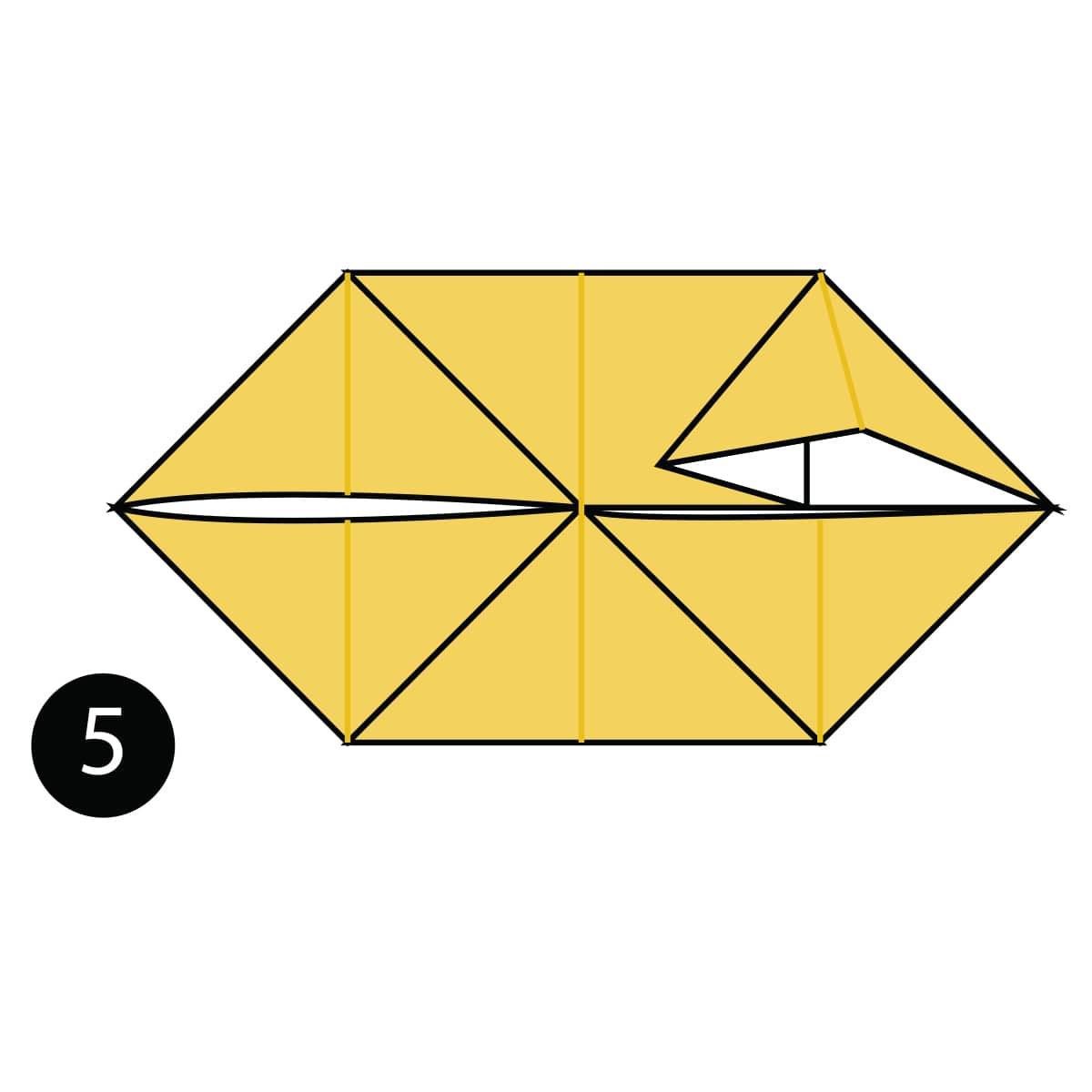 Pomeranian Step 5