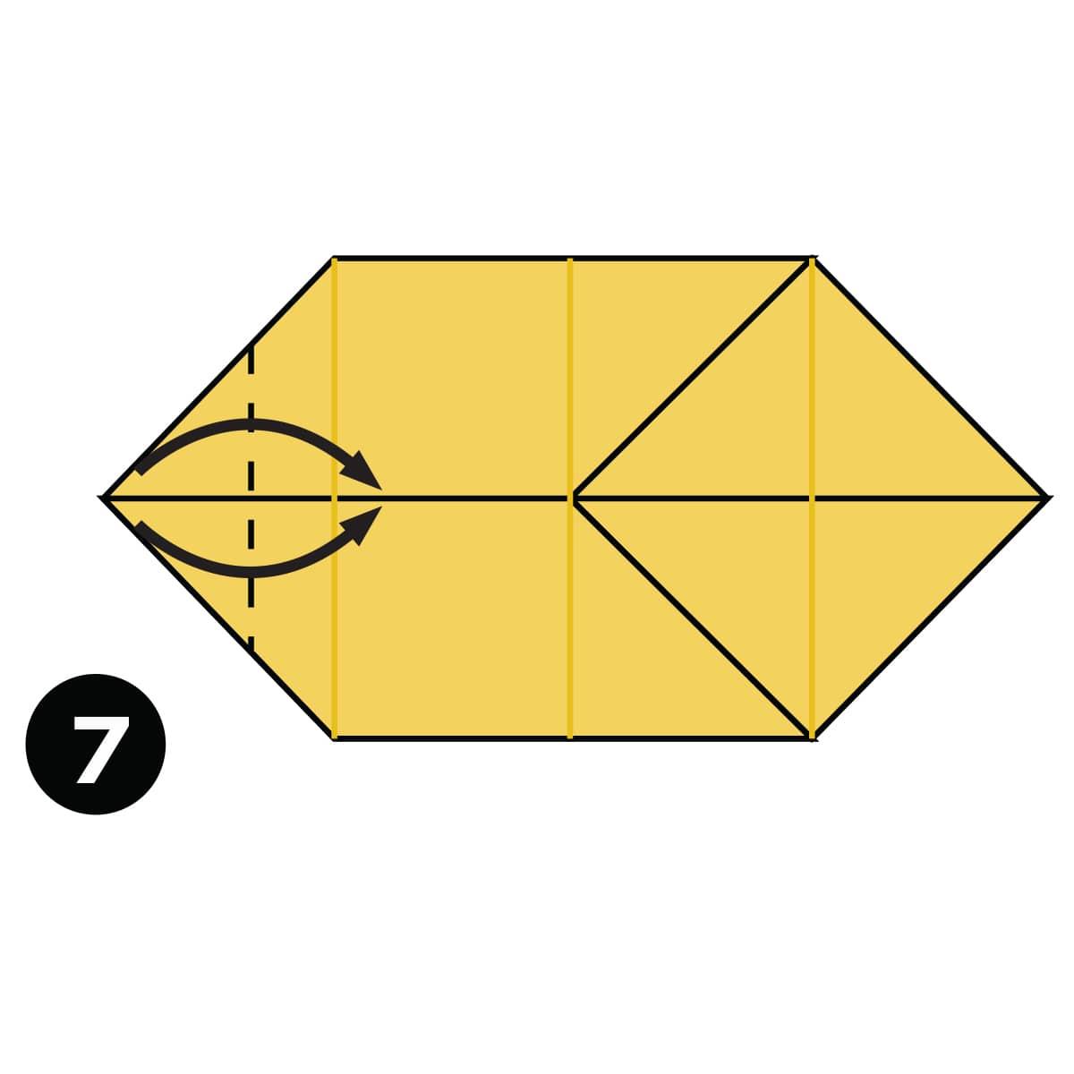 Pomeranian Step 7