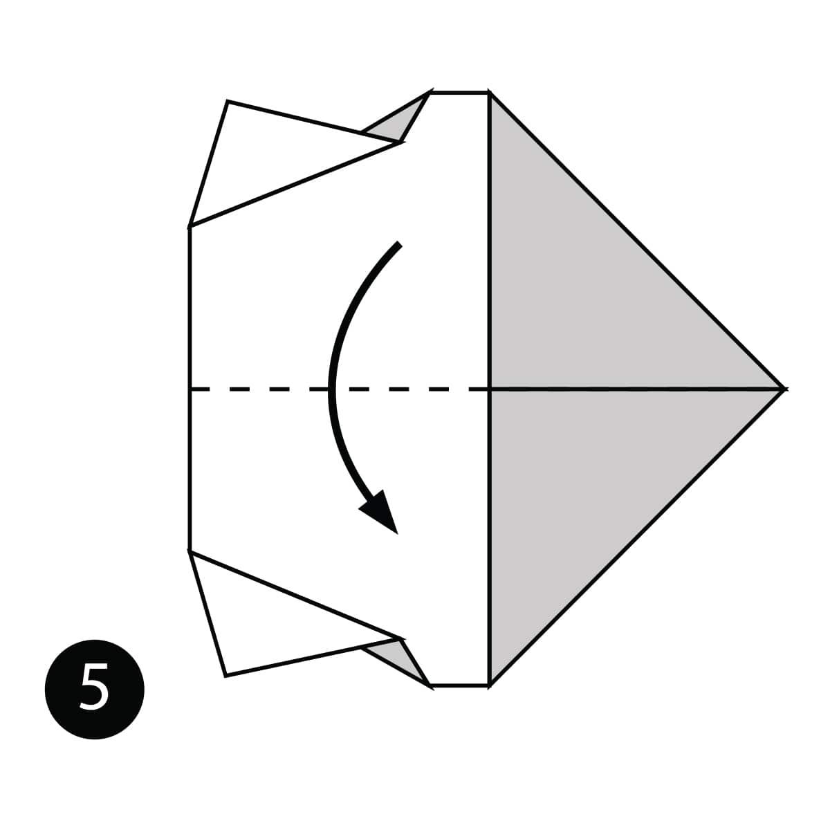 Rhino Step 5