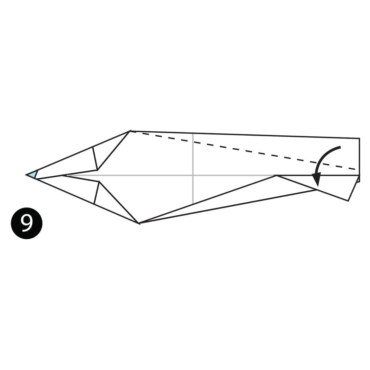 Sardine Step 9