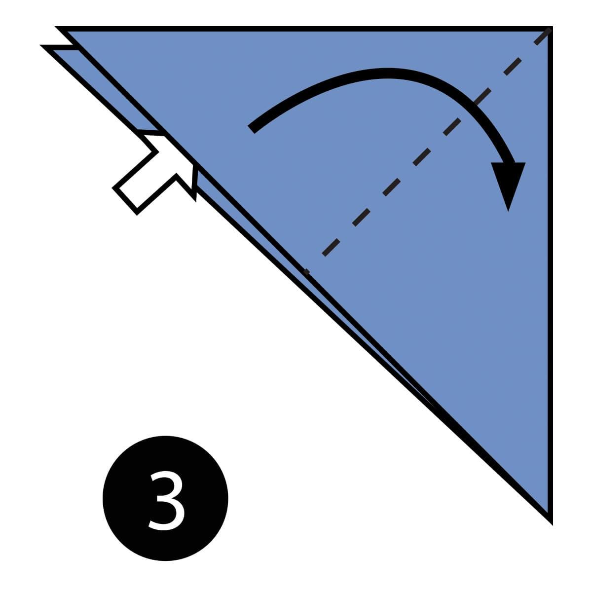 Shark Step 3
