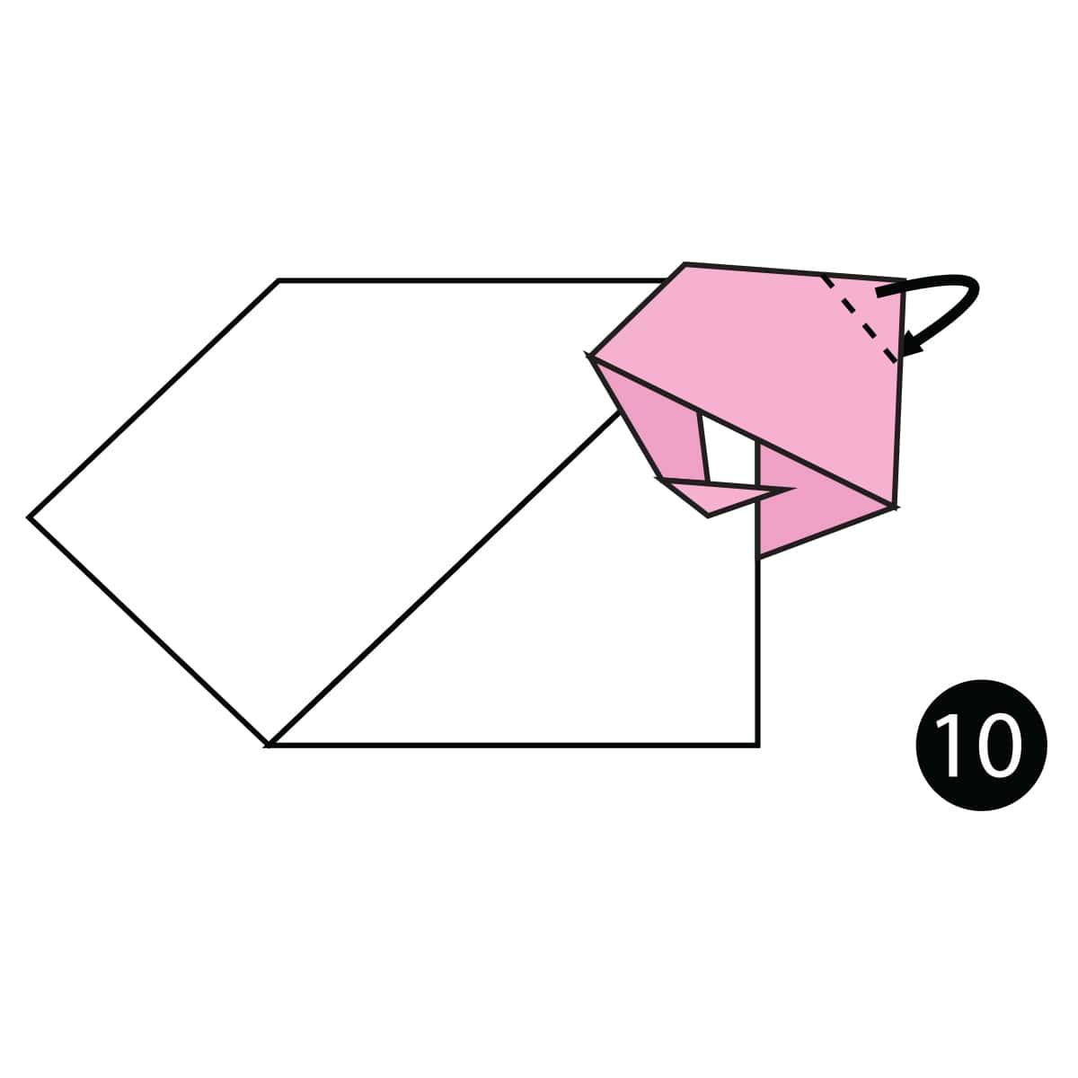 Sheep Step 10