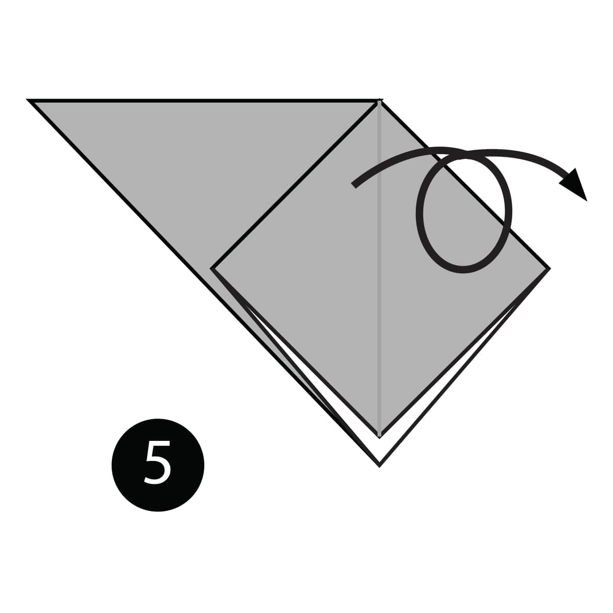 Swallow Step 5