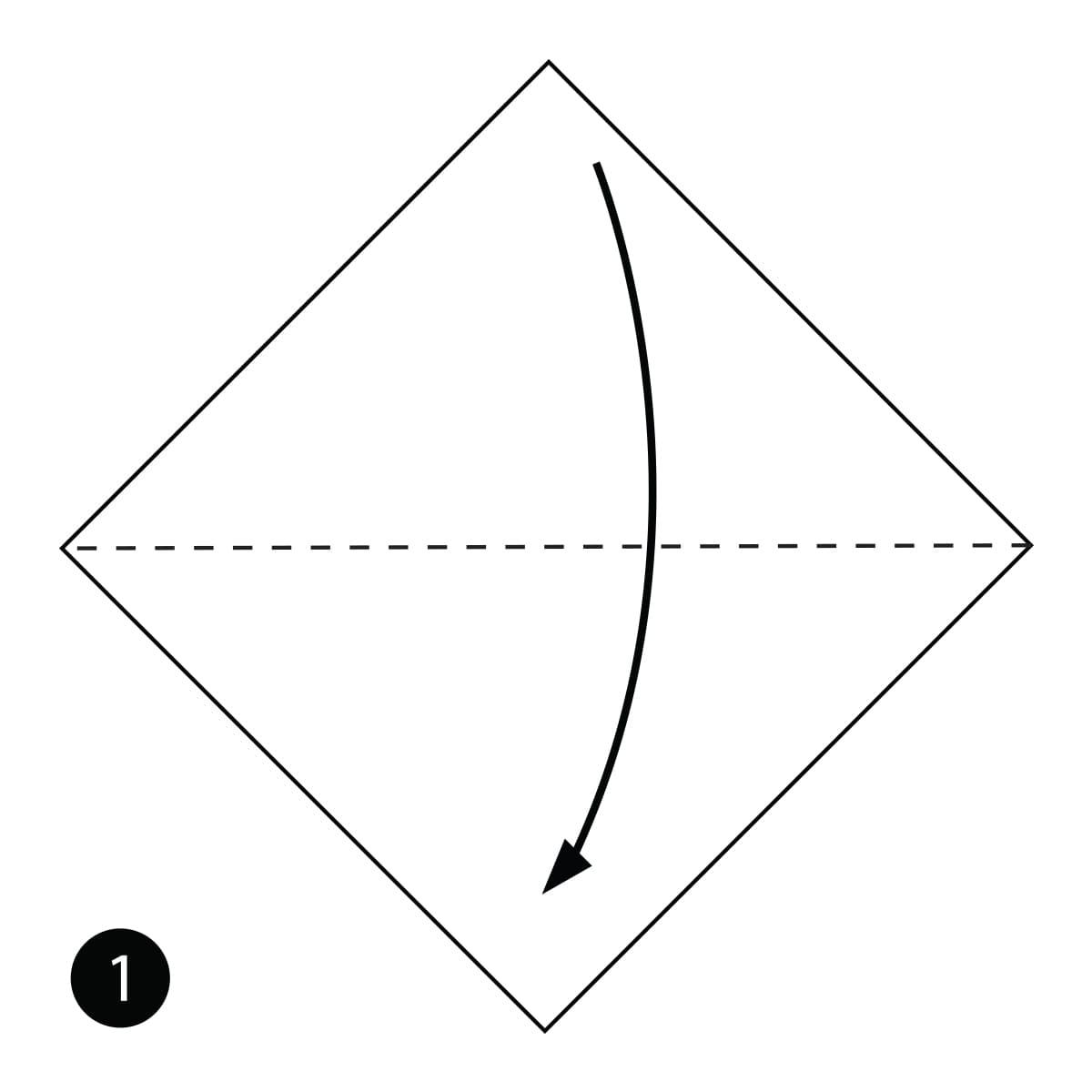 Tadpole Step 1
