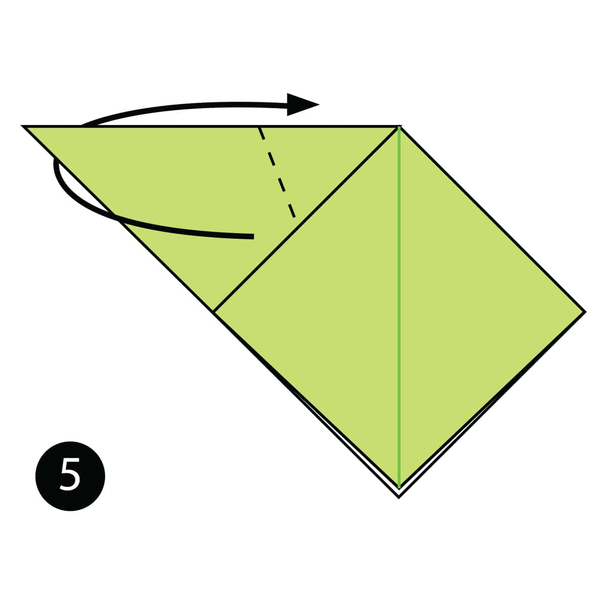 Tadpole Step 5