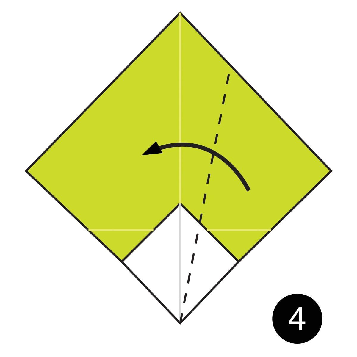 Turnip Step 4