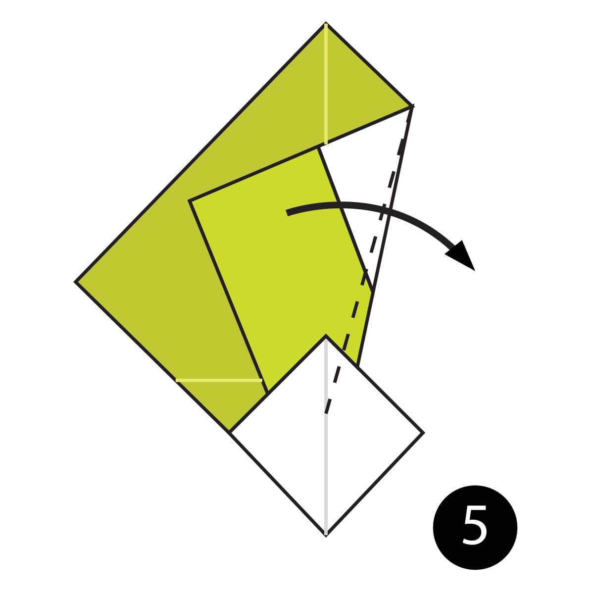 Turnip Step 5