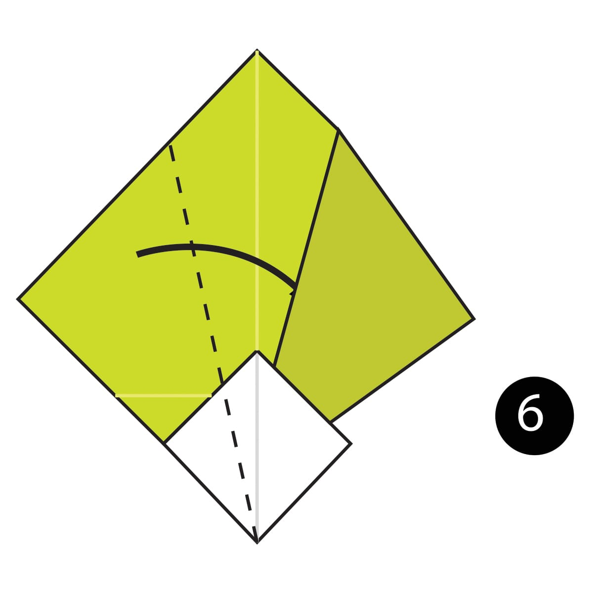 Turnip Step 6