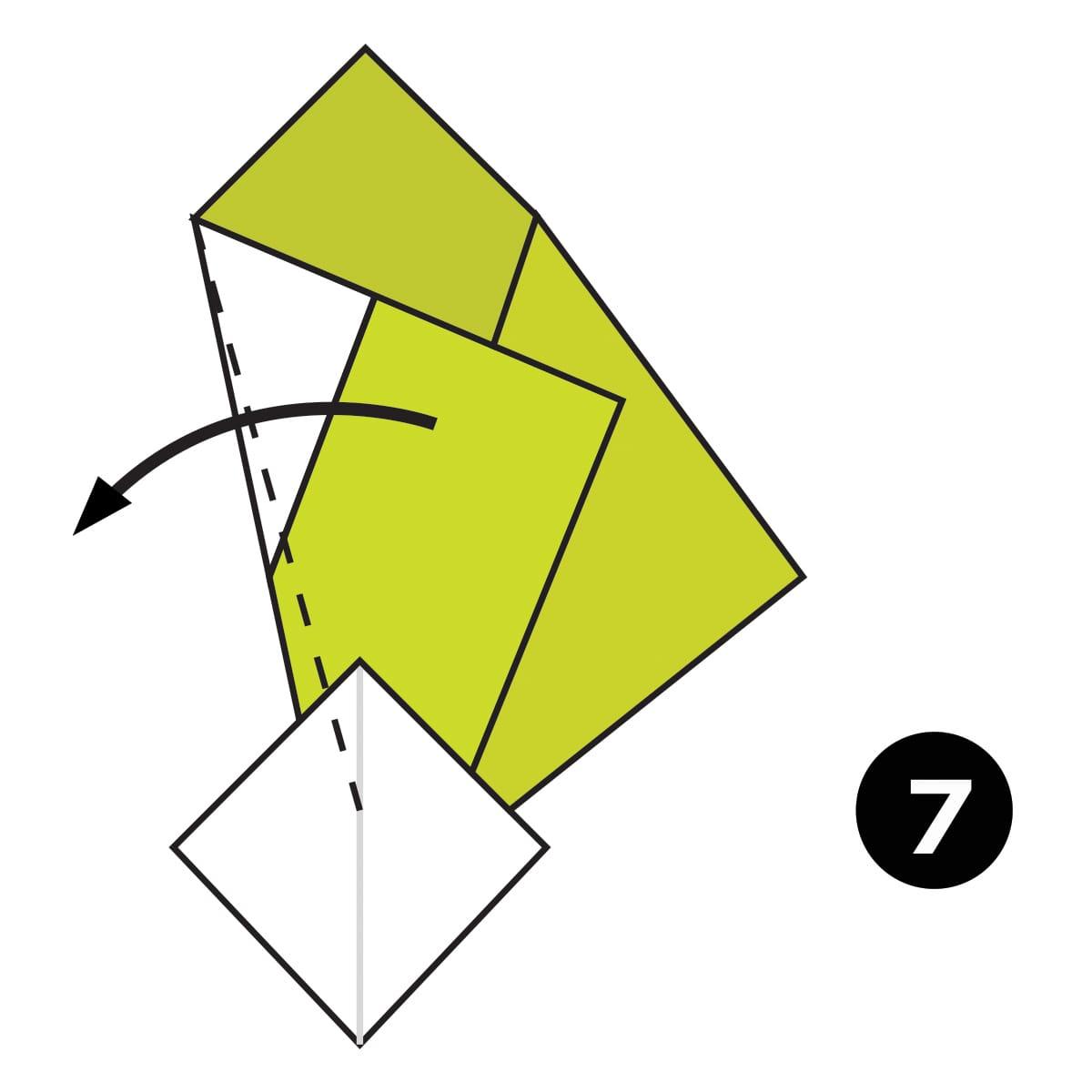 Turnip Step 7