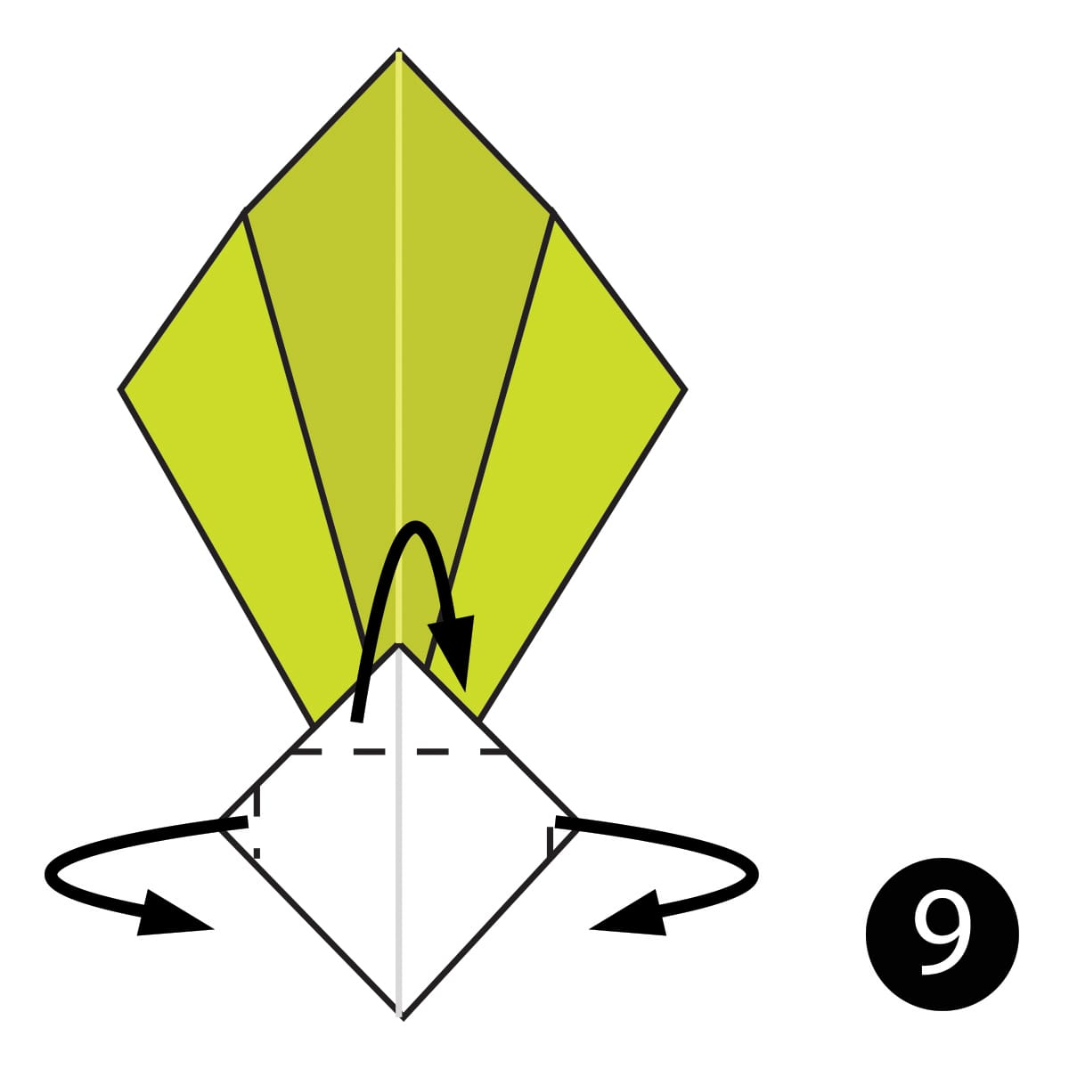 Turnip Step 9