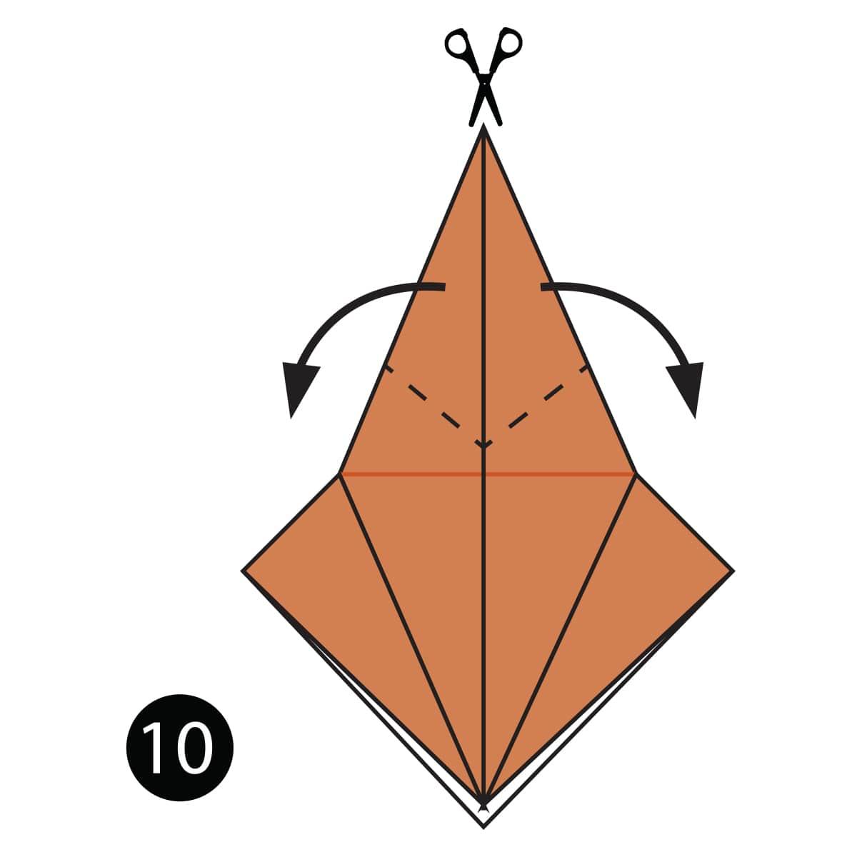 Turtle Step 10