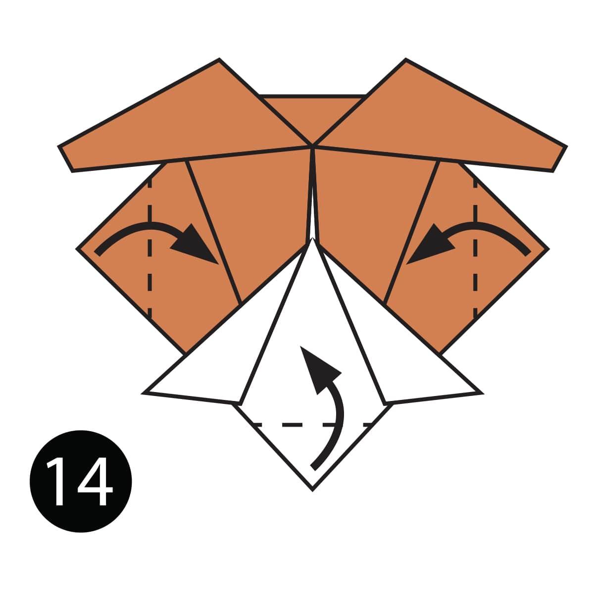 Turtle Step 14
