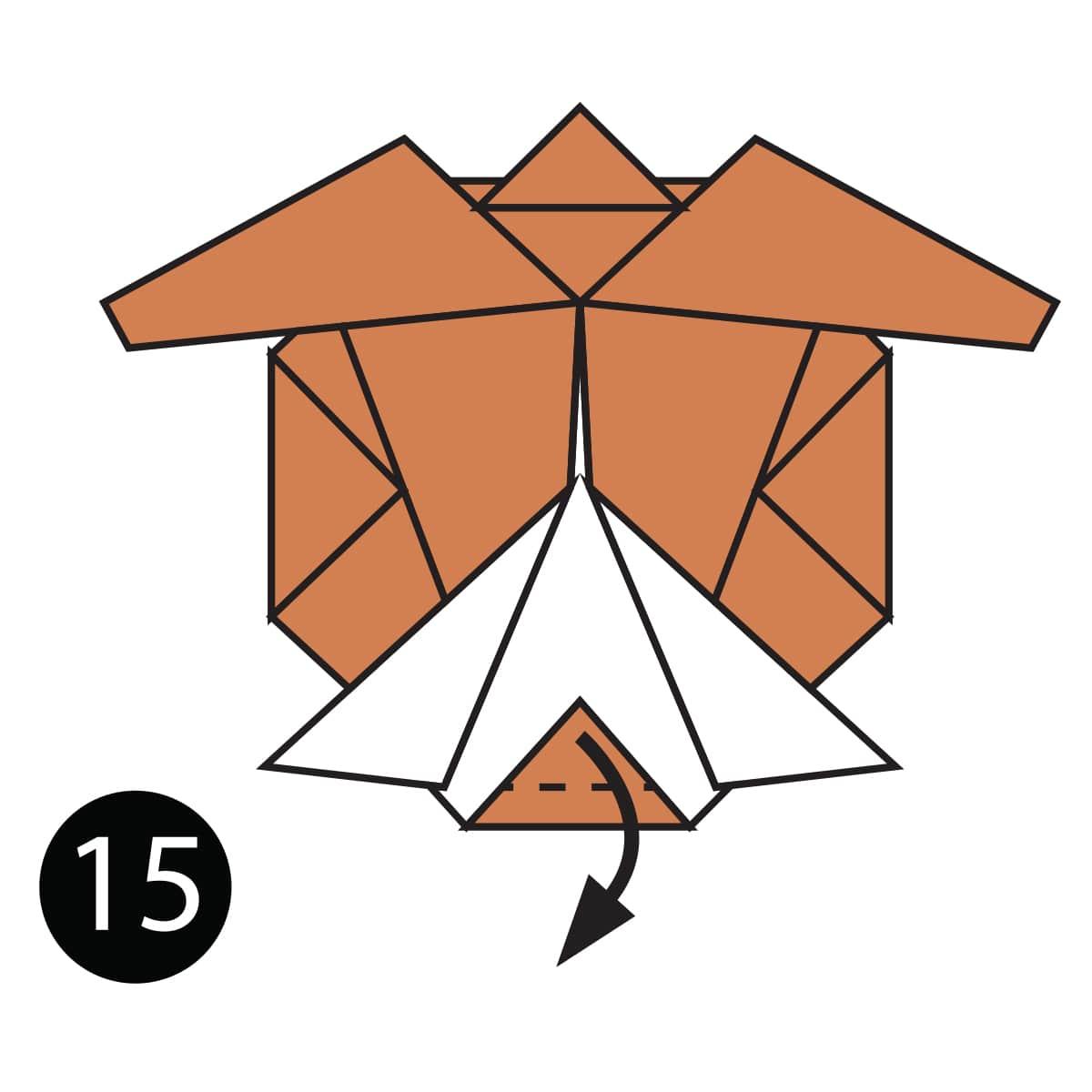 Turtle Step 15