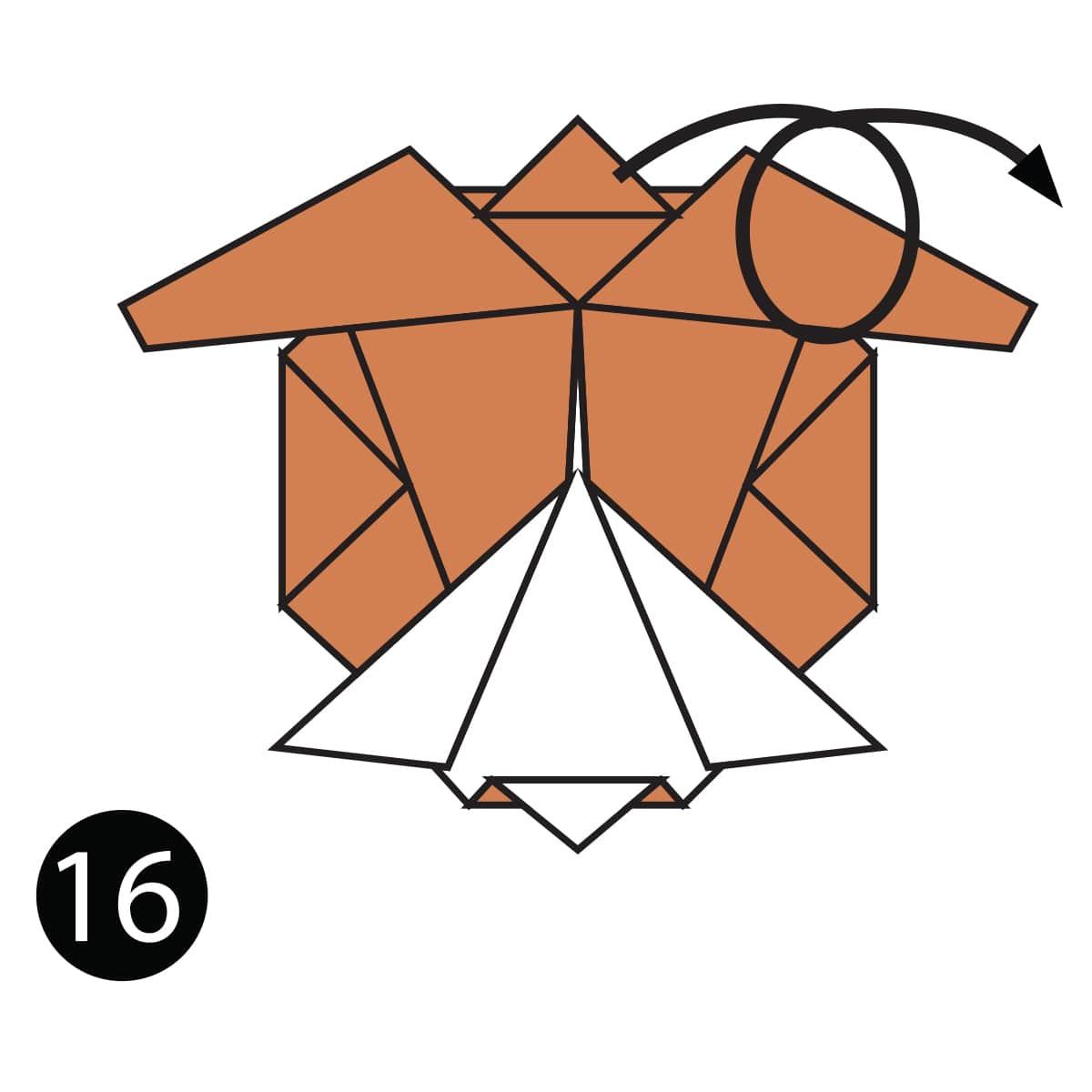 Turtle Step 16