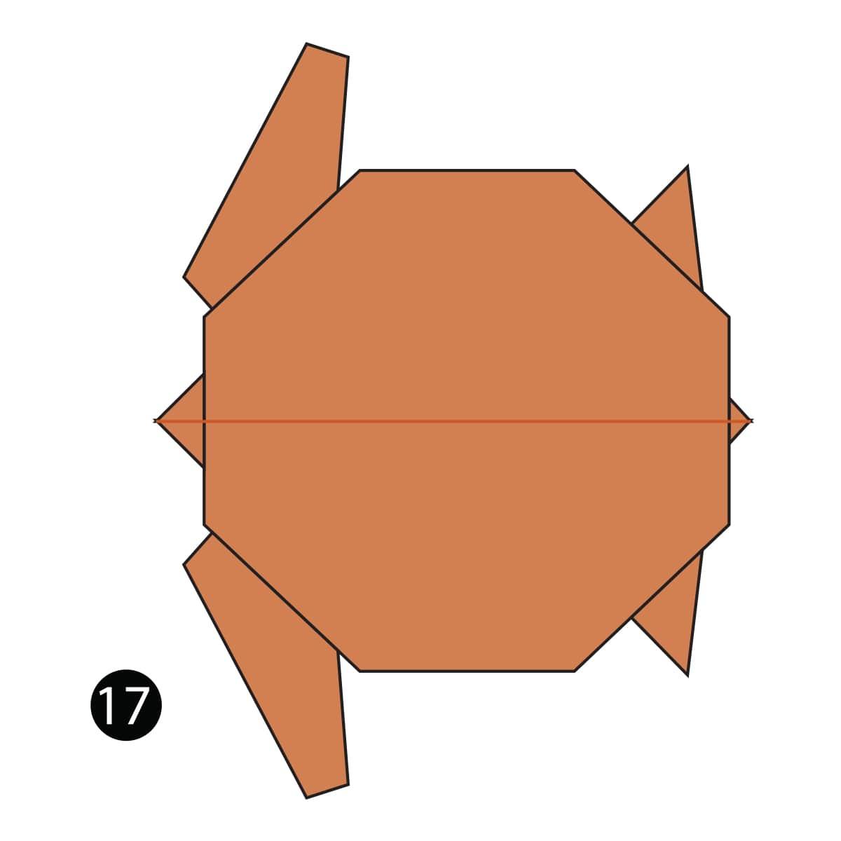 Turtle Step 17