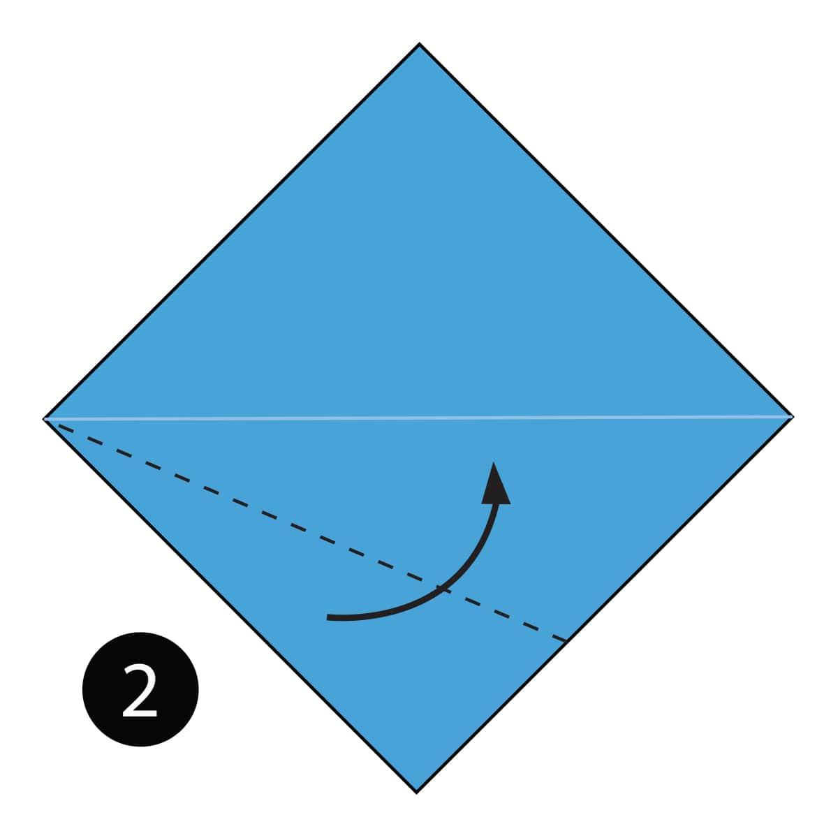 Whale Step 2