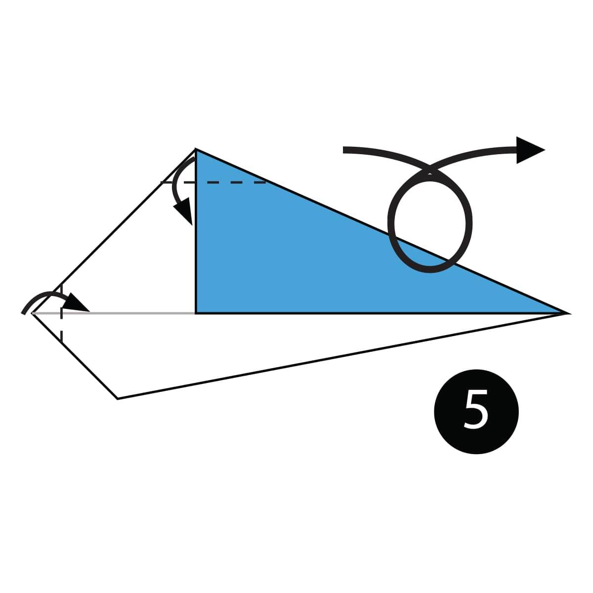 Whale Step 5