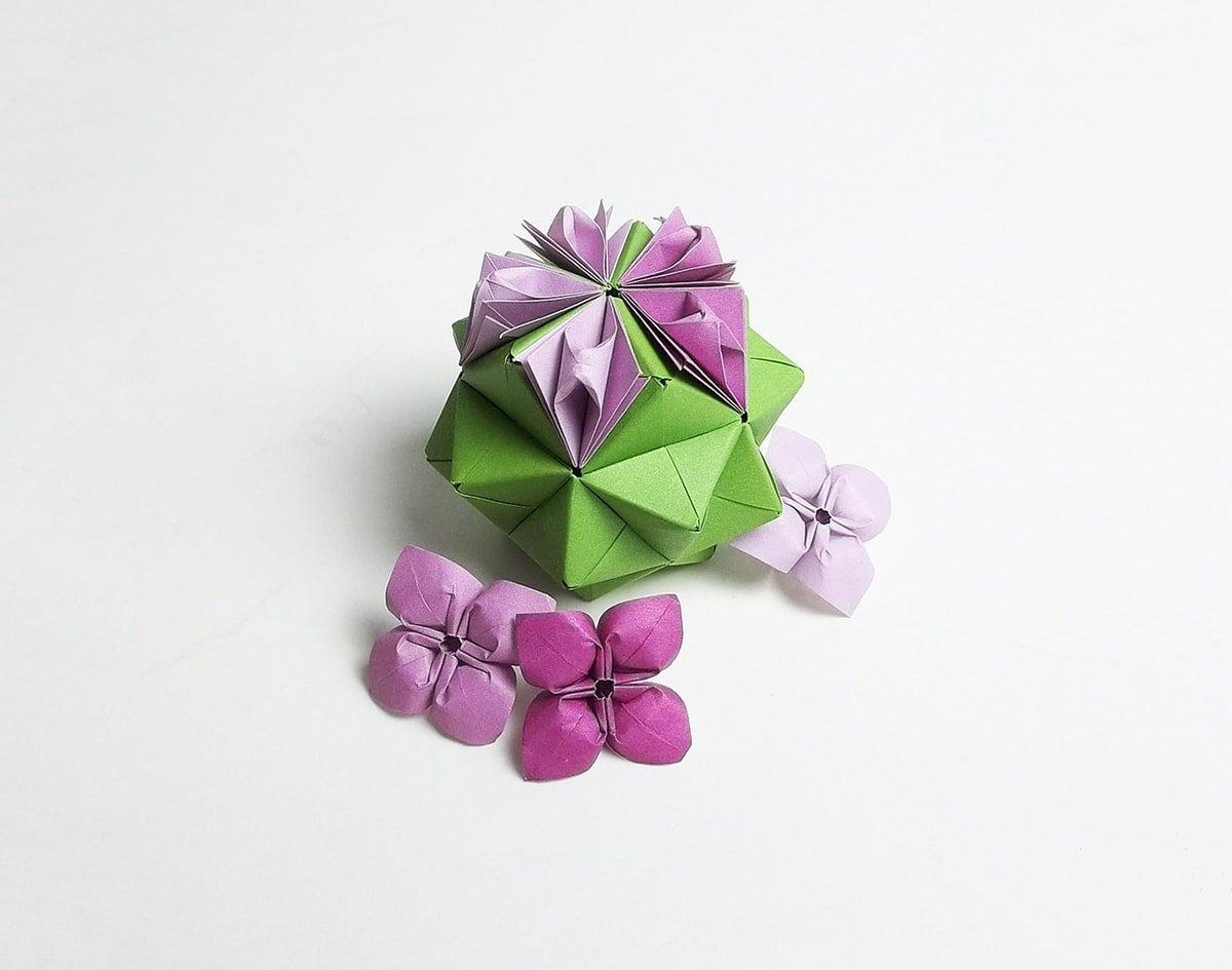 Flower Sonobe