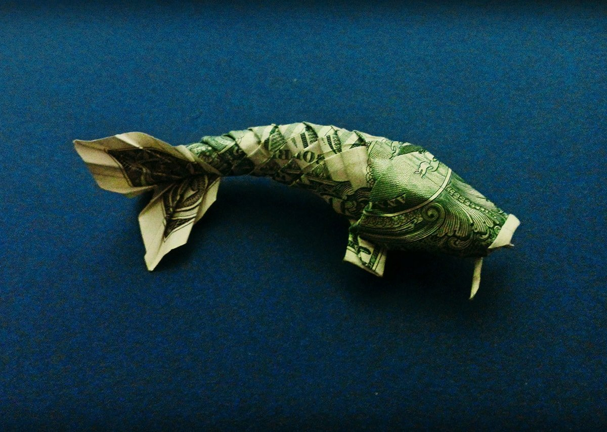 Peacock Money Origami - Dollar Bill Art | Dollar origami, Money ... | 855x1200
