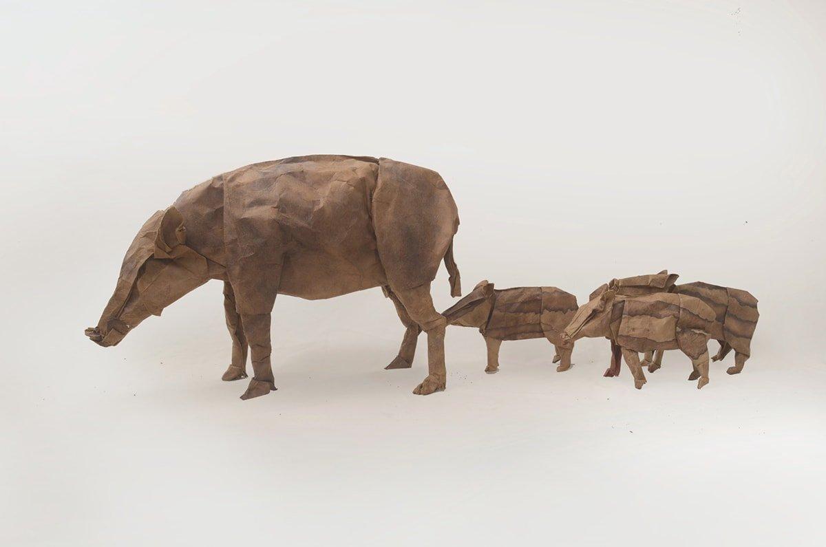 Boar Family