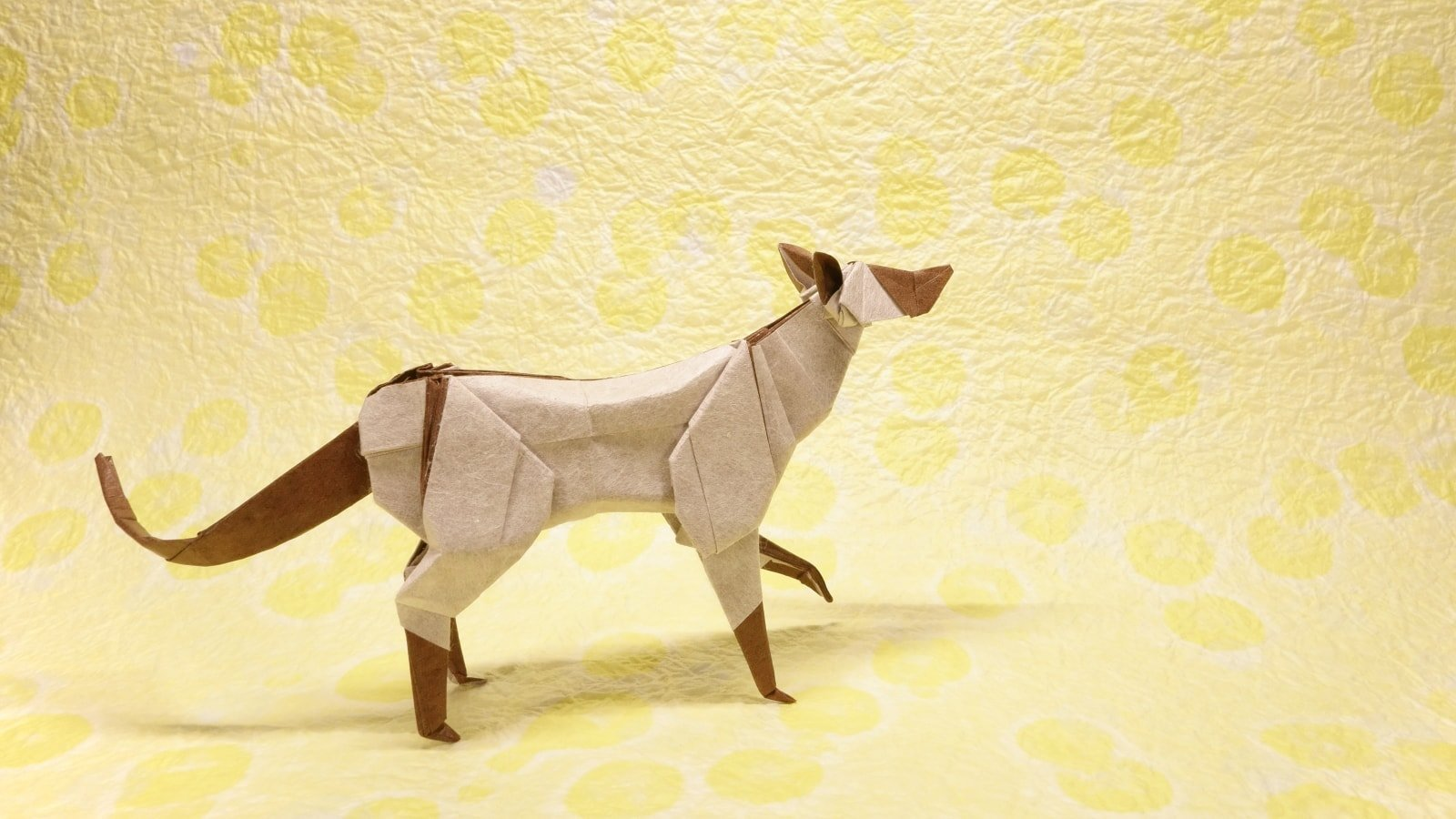 Im Feline Good About Showing You These Fantastic Origami Cats Cat Diagram