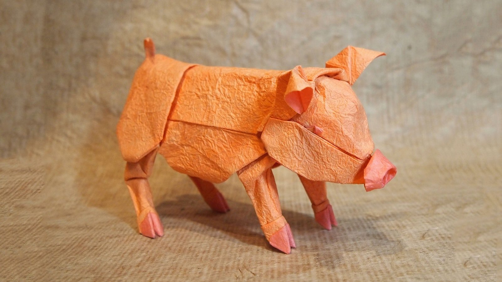 Step by step instructions how to make origami pig pigs t - photo#8