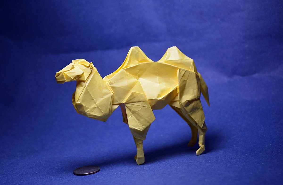 Tiny Bactrian Camel