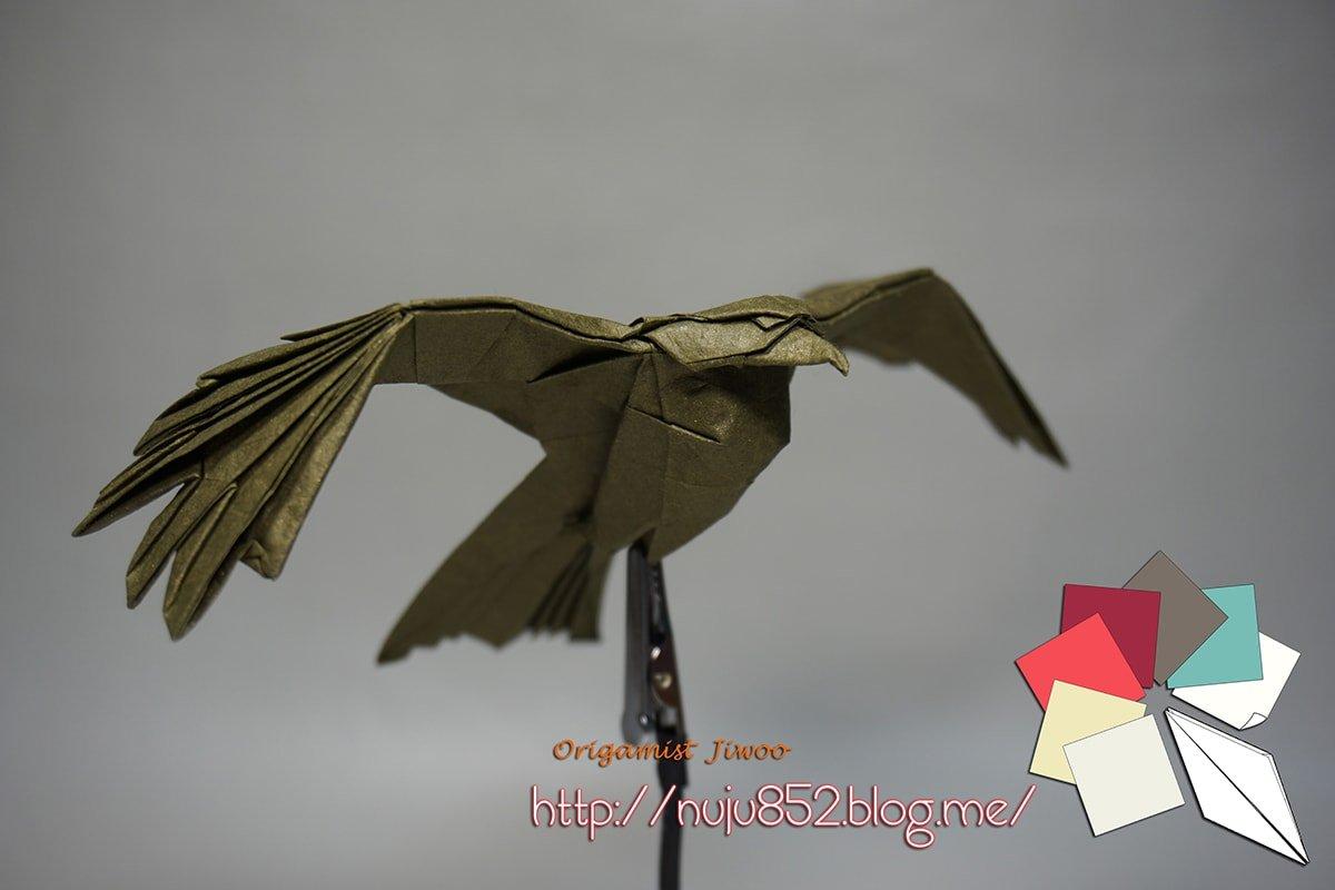 Black Kite by Ji Woo Han