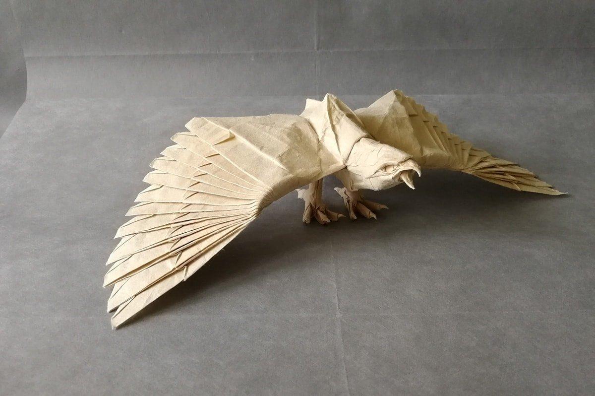 Eagle by Vít Masopust