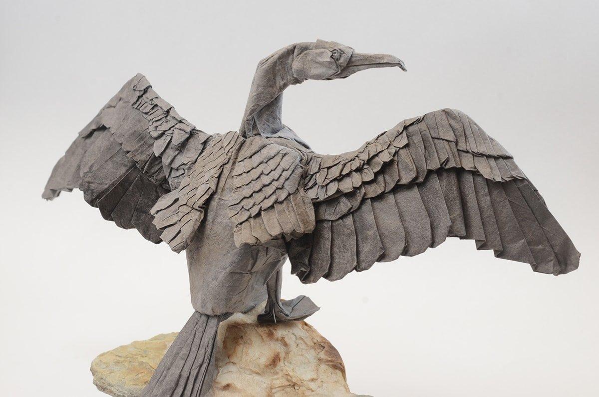 Great Cormorant by Kei Watanabe