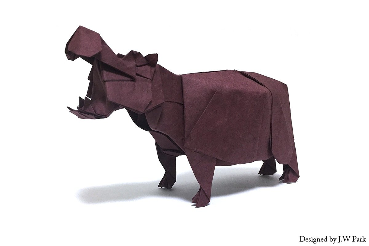 Hippo by J.W Park