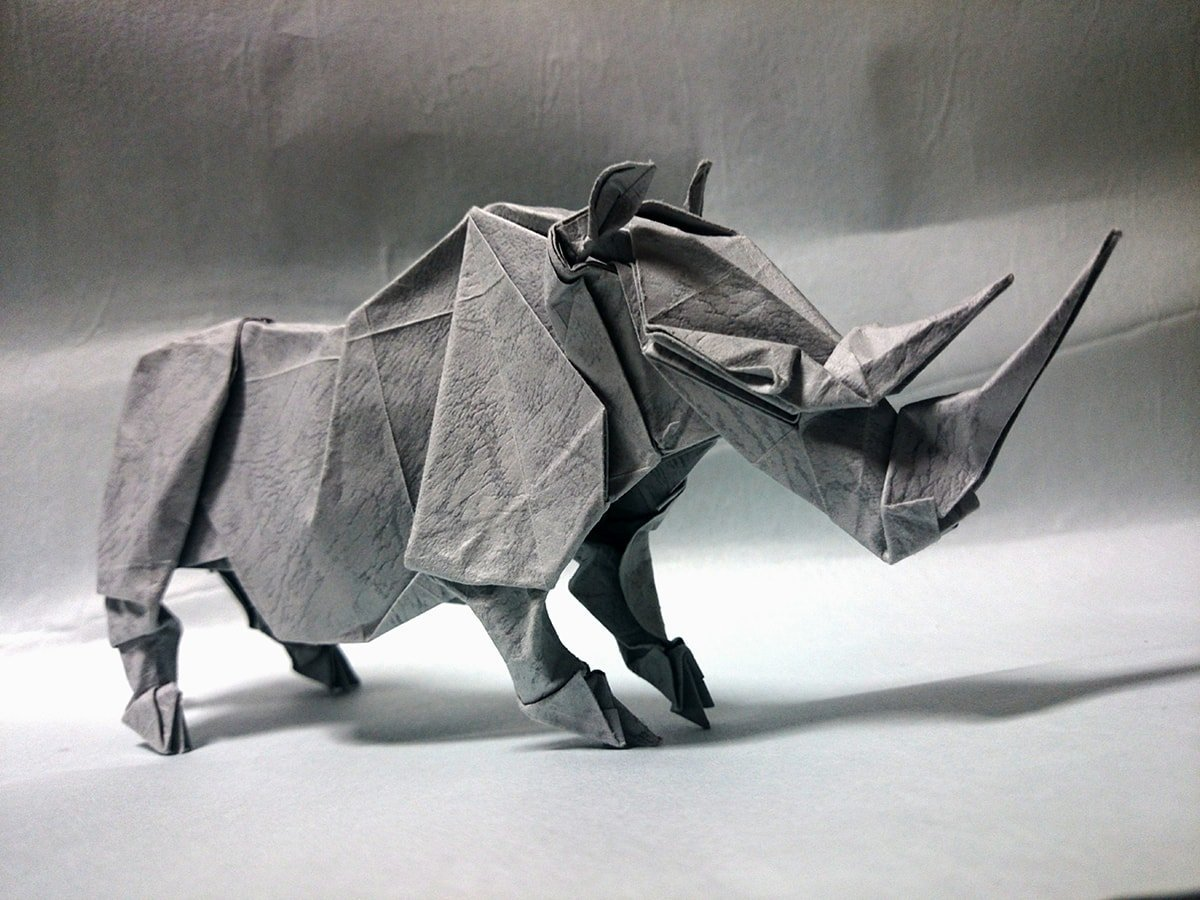Rhino by Satoshi Kamiya