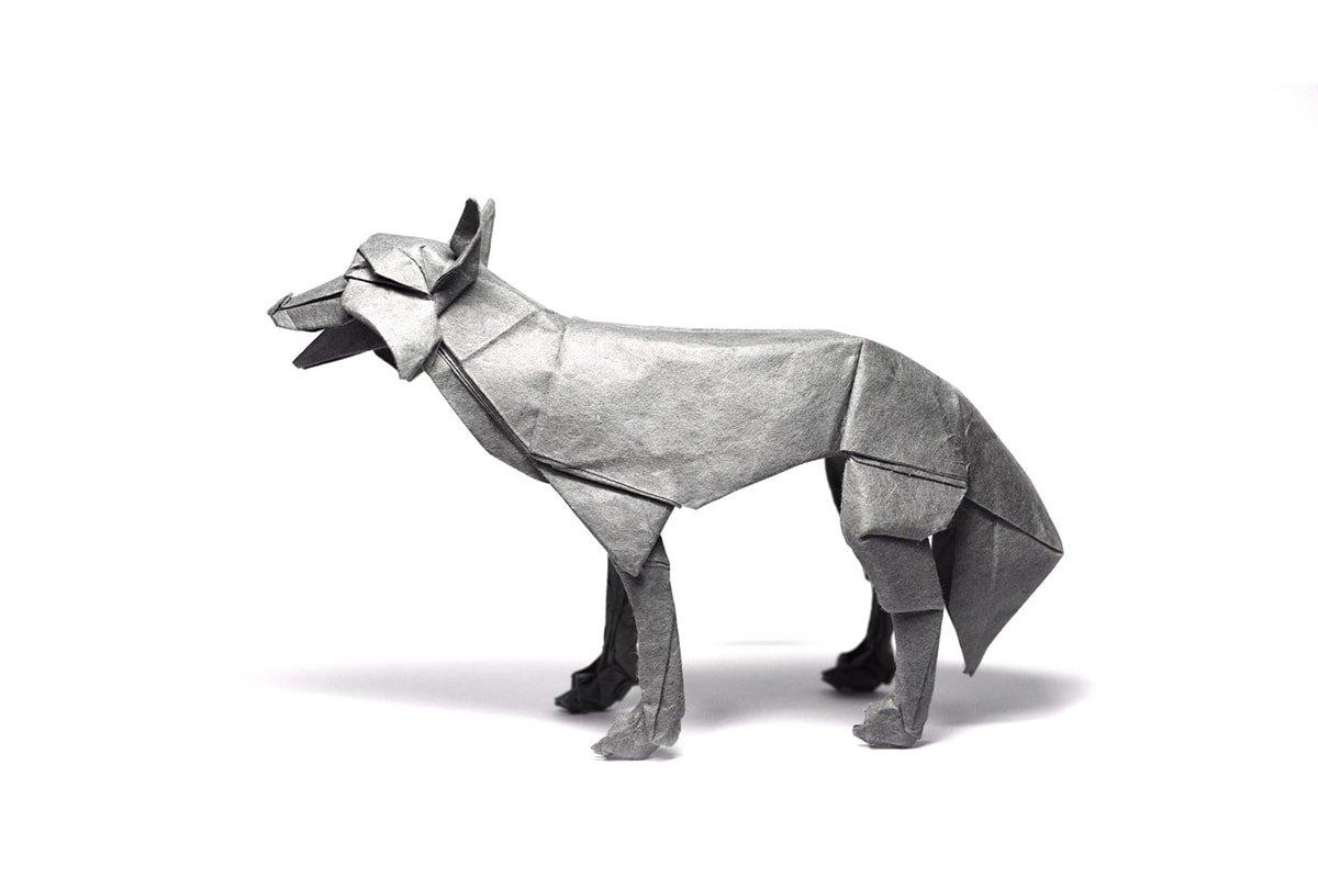 Wolf by Shuki Kato