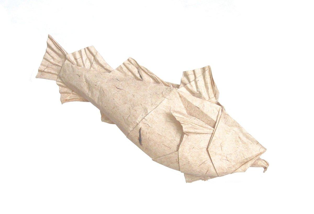 Atlantic Cod, Designed by Winston