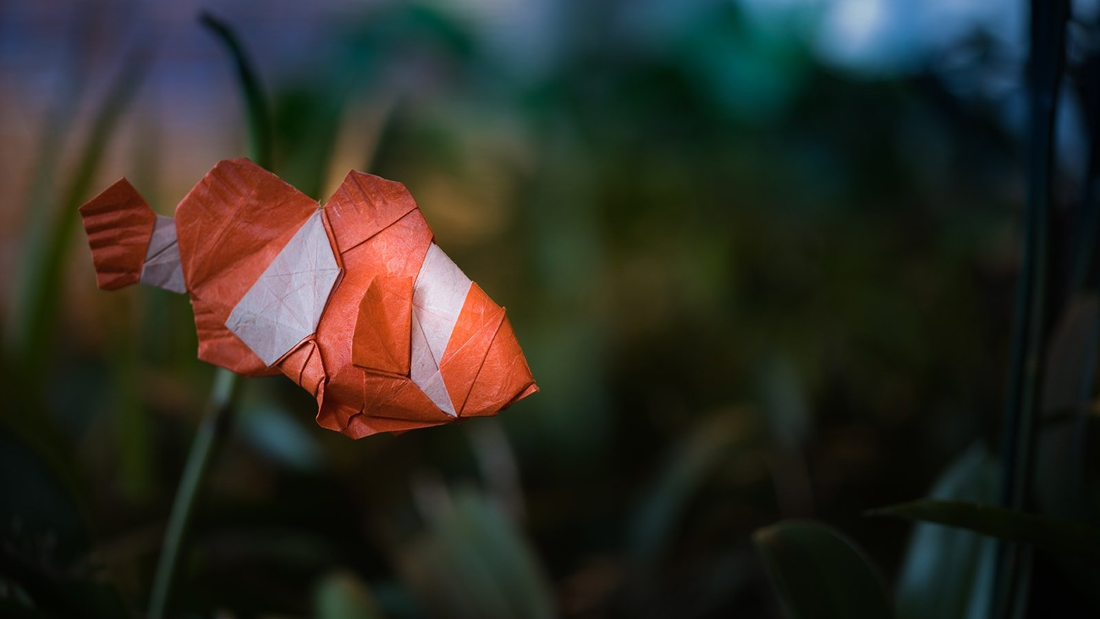 Best Origami Fish of 2018