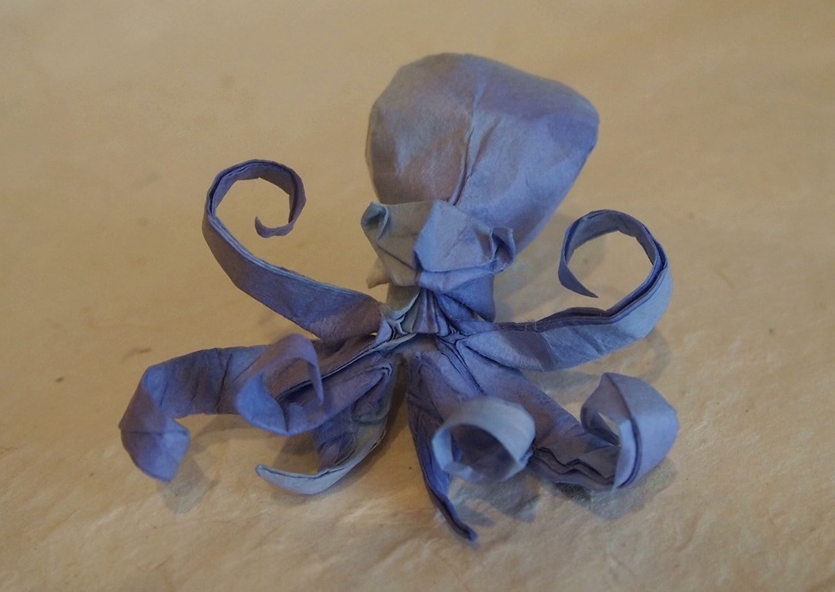 Octopus by Hiroaki Kobayashi