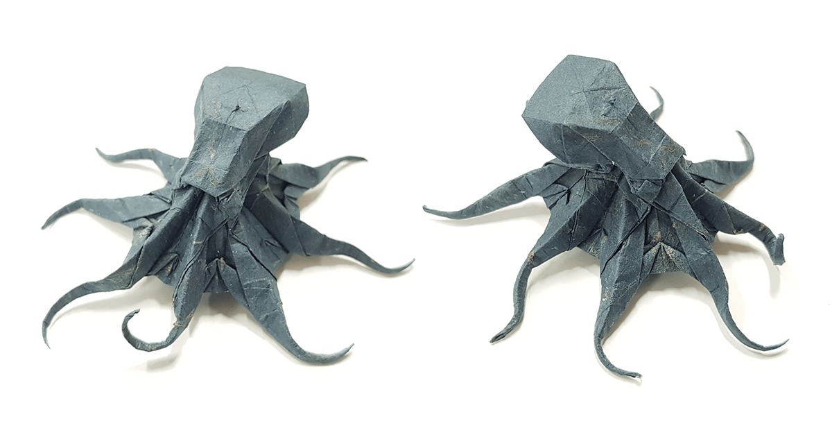 Octopus by Satoshi Kamiya