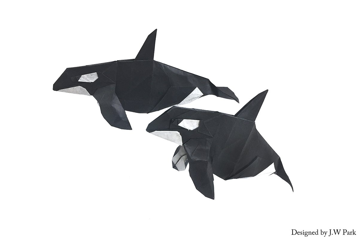 Orcas by J.W. Park